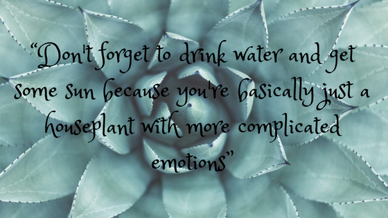 """Don't forget to drink water and get some sun because you're basically just a houseplant with more complicated emotions"""